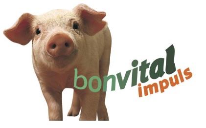 Бонвитал в кормлении свиней